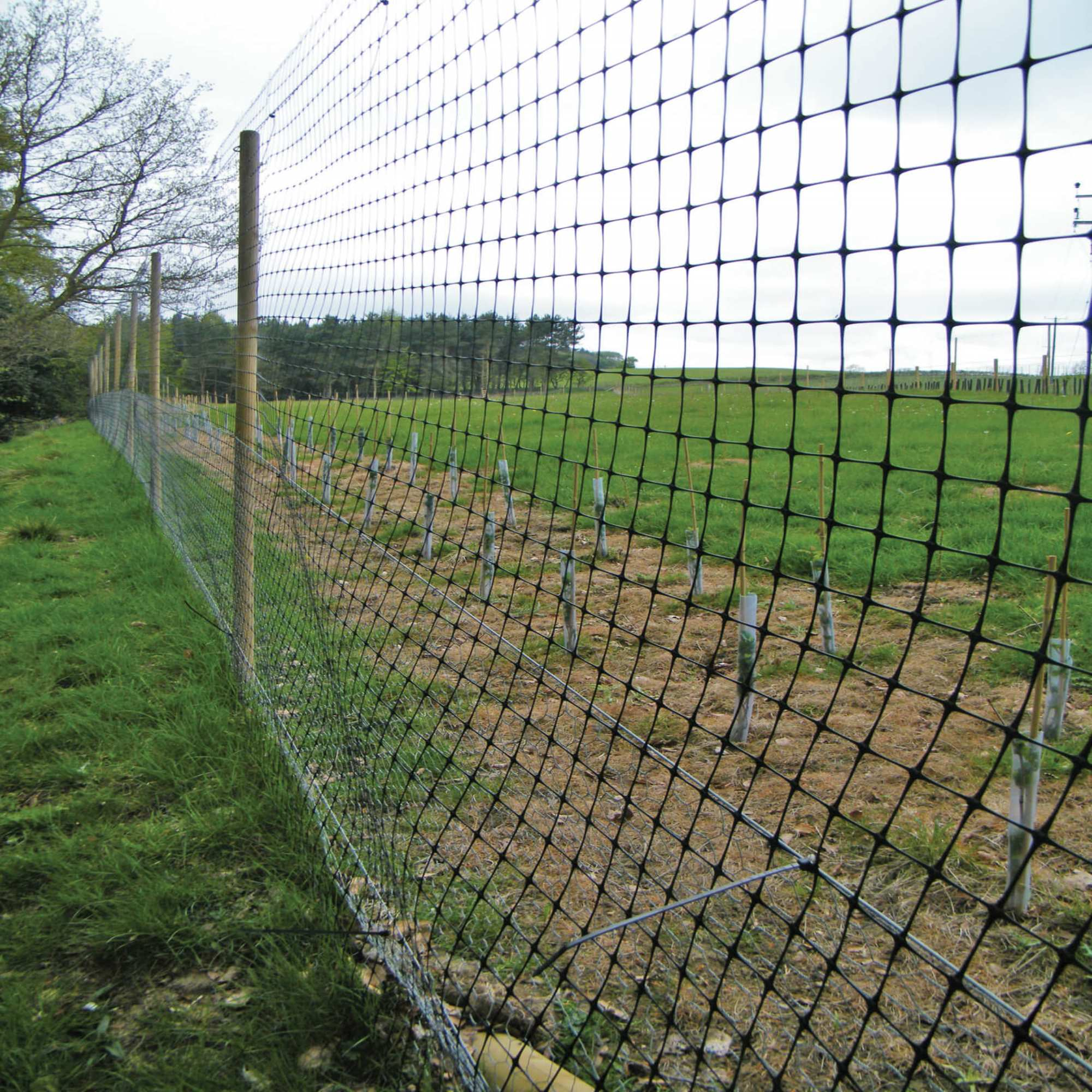 Stock & Animal Fencing